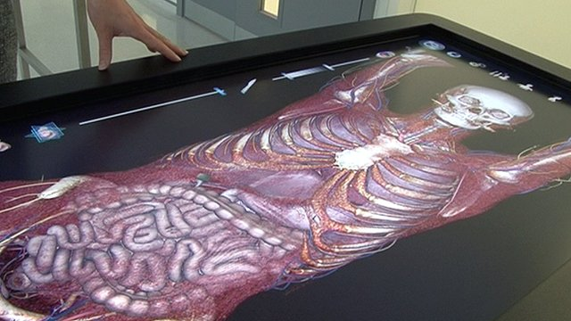 Digital Cadaver