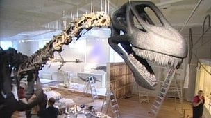 Rutland Dinosaur at New Walk Museum