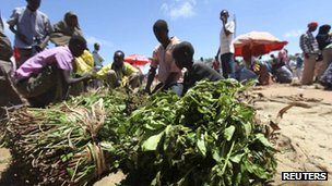 Somali traders arrange narcotic leaves known as khat at an open market in southern Mogadishu