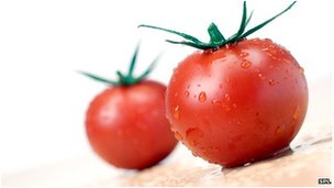 Tomato genome science