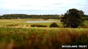 The site in the National Forest in Leicestershire