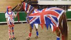 Horse in a union jack flag