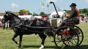 The horse and carriage display at the Cambridgeshire County Show in 2009