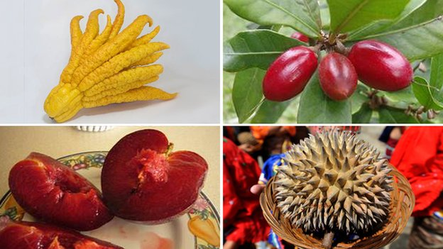 buddha's hand (kaldian), miracle berries (Hamale Lyman), durian (AFP), pluot (BMRR)