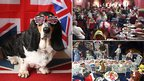 Basset hound in Jubilee sunglasses, Gorleston Jubilee party and dolls street party