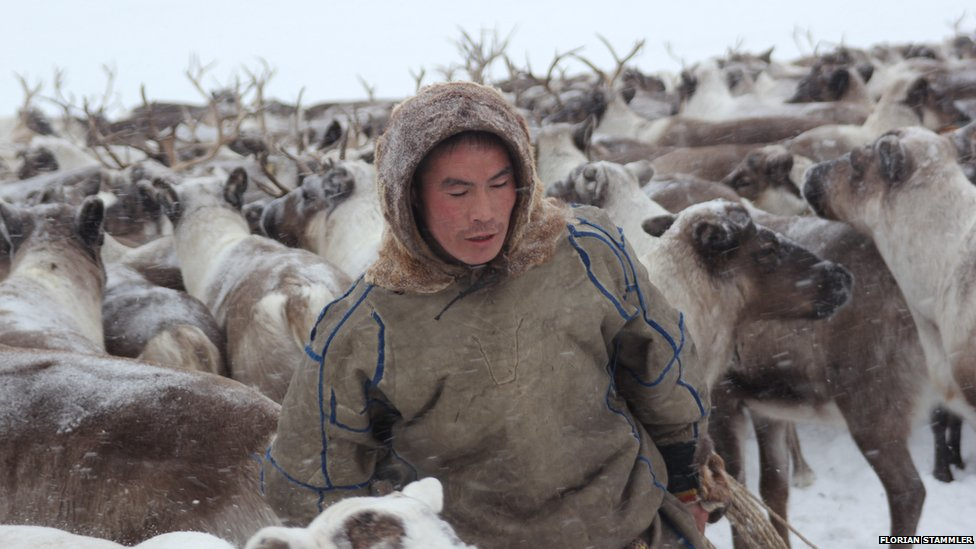 Bbc News Reindeer Herders In The Russian Arctic