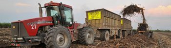 Tractor in Spain