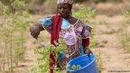 Ramata Hama attending to moringa trees in Tera, north-western Niger