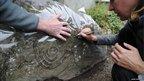 Llwydiarth Esgob Stone, Anglesey