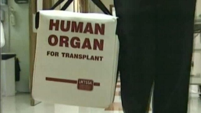Organ donation container