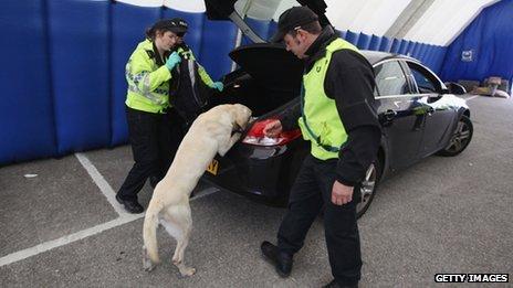 Sniffer dog checks car