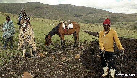 Farmer in Lesotho
