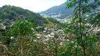 Vista of favela and adjacent Tijuca Forest
