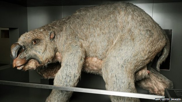 Diprotodon model at the Australian Museum, Sydney