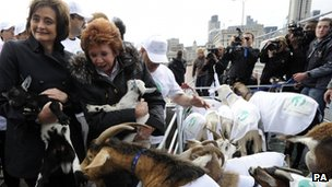 Cherie Blair and Cilla Black with goats