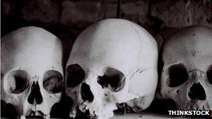 Three human skulls