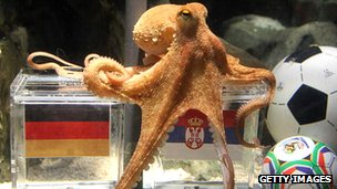 Paul the octopus predicting the outcome of a football match