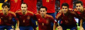 Spain's Euro 2012 heroes