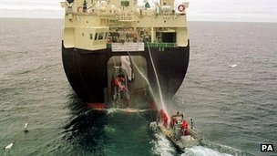 Greenpeace activists in an inflatable, attached to an illegally killed minke whale as it is winched onboard a Japanese factory ship (file photo)