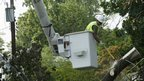 A tree removal worker cuts down branches that have become tangled with power lines in Sliver Spring, Maryland 4 July 2012