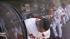 Members of St Louis Cardinals baseball team try to cool off during their home win against the Miami Marlins - 7 July
