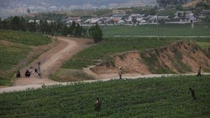 North Korean farmers tend a field on the outskirts of Pyongyang