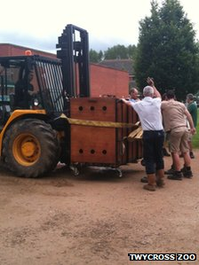 Boulas inside a crate on a forklift truck