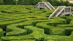 Hedge maze