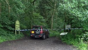 Landrover Freelander in woodland