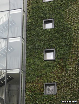 Green Wall (Image: ANS Systems)