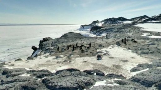 Google tours the Antarctic