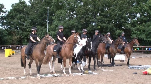 South Yorkshire Police horses