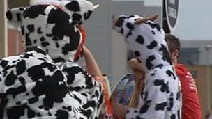 Dairy farmer supporters dressed as cows
