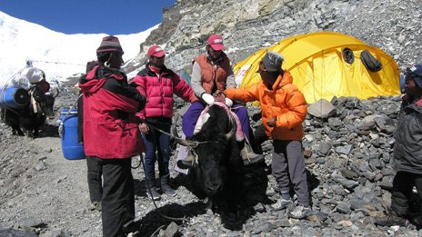 This handout photo supplied by Jamie McGuinness of Project-Himalaya.com shows Australian climber Lincoln Hall descending from the Advance Base Camp at 6400m (20,800 ft) May 28, 2006 on Mount Everest, Nepal.