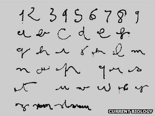 Eye-written letters and numbers