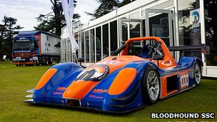 Bloodhound Radical