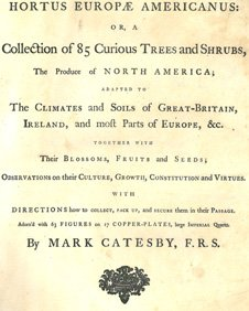 The Hortus Europae Americanus was printed in 1767