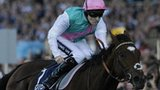 Frankel in action in the Queen Elizabeth II stakes