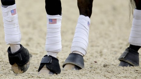 Ann Romney's horse Rafalca has Stars and Stripes socks