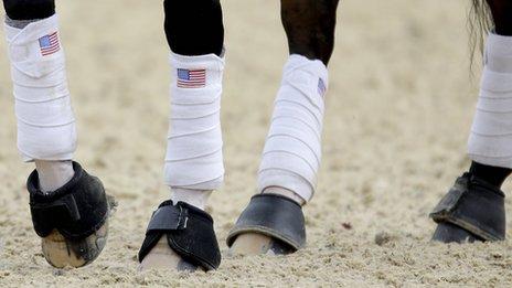 Ann Romney's horse Rafalca has Stars and Stripes socks