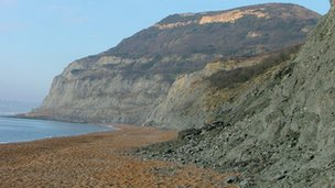 Dorset coast
