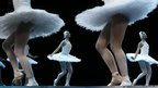 Dancers from the English National Ballet perform Swan Lake