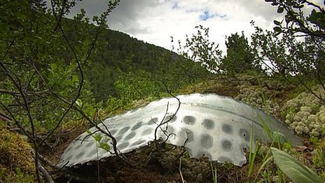 Space rocket debris in Altai