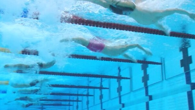 Underwater view of swimmers in Olympic pool