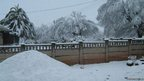 Thick snow blankets a garden in Vereeniging south of Johannesburg, South Africa (Courtesy Eyewitness News)