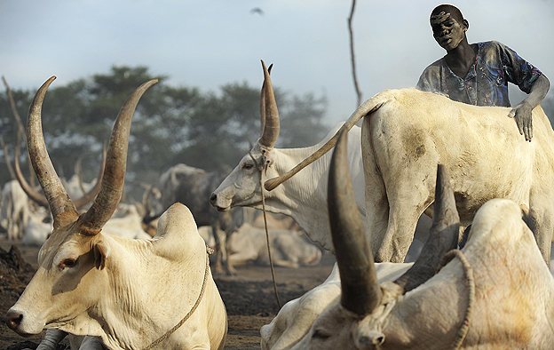 Dinka herdsman 