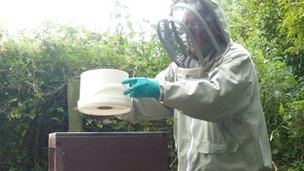 Putting a feed of sugar syrup on the bees