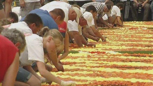 Volunteers lay Belgian flowers to create giant carpet inspired by Africa