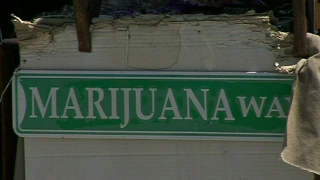 A street-sign reading 'Marijuana Way'