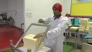 Prima Cheese factory